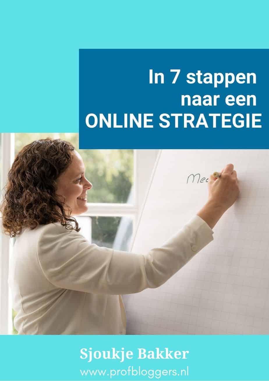 Voorkant van In 7 stappen naar een geweldige online marketing strategie